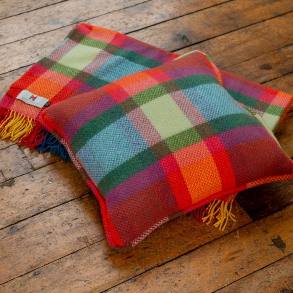 Cushion  Multi Colour Check